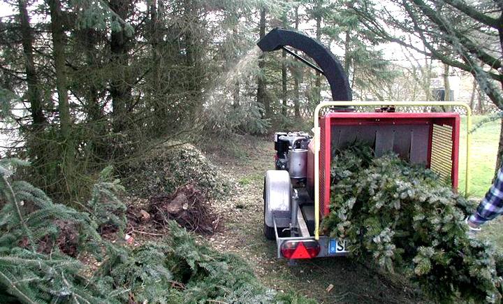Zoo Zöllner - Service unterwegs - Sie haben ein Problem - wir brennen den Baum ab